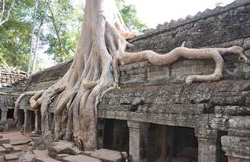 Angkor Wat photo №23