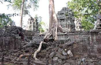 Angkor Wat photo №24