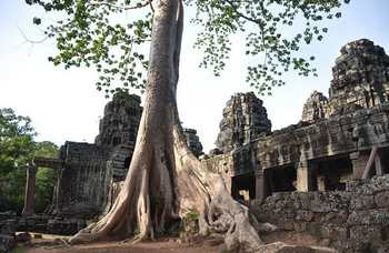 Angkor Wat photo №25