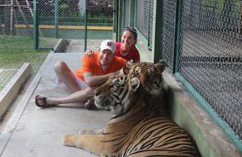 Tiger Kingdom on Phuket photo №6